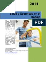 Seguridad y Salud en El Trabajo 2014