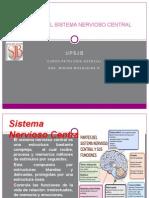 Patologia Snc Patologia Especial