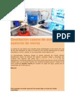 Destilación Casera de Aceite Esencial de Menta