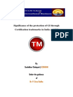 Term Paper - GI , Trademarks