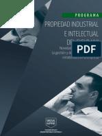IE - Programa Propiedad Industrial e Intelectual