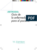 Guia Artrosis