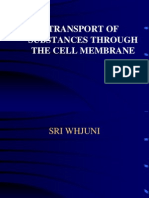 l1.2-Copy of Transport of Substances Through the Cell Membrane