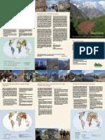 PDF Mountain