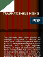 TRAUMATISMELE M++äINII - MASTER VI PP