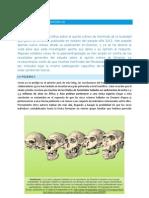 El Quinto Cráneo de Dmanisi