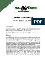 CAMINO DE PERFECCIÓN .doc
