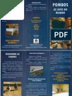 Folder Pombos