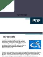 Paraplegia