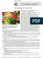 Cynthia Brians Gardening Guide for September