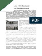Lección 1_Contaminación