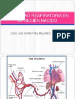 Dificultad Respiratoria en El Rn