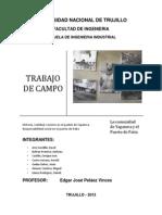 Informe Trabajo de Campo - Grupo Golden Engineers