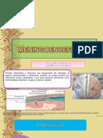 meningoenceflitis