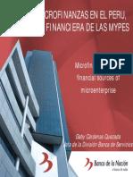 2008 WLN - Gaby Cardenas - Microfinance in Peru, Financial Sources of Microenterprise