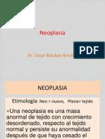 Neoplasia Uap 190414 Hejcu 2