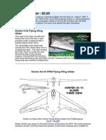 Horten IX Glider