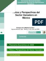 266 6.Retos y Perspectivas Del Sector Ganadero en Mexico