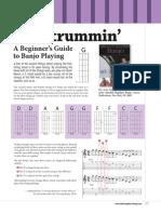 Banjo Beginner Guide