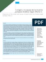 Etiologia Muerte Española
