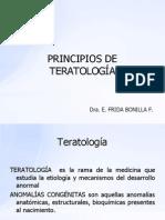 Teratología Nuevo