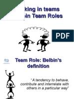 Belbin Team Roles