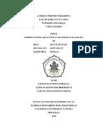 Laporan Individu upload.pdf