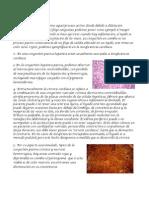 Patologia Guia