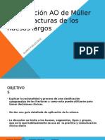 6.5 Clasificacion_AO(Huesos Largos)