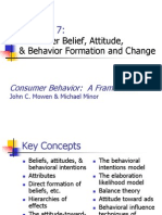 Attitude (Consumer Behavior)