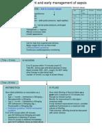Sepsis Flow Chart Final
