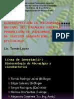 2014 Bioprospección de Microalgas Nativas del Paraguay para la Producción de Biocombustibles Tercera Generación. Estudio preliminar