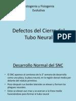 Defectos Del Cierre Del