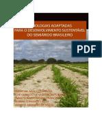 Tecnologias Para Semiarido Brasileiro