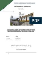 Estudio de Impacto Ambiental Pencahi