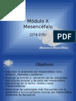 P0001 File Mesencéfalo