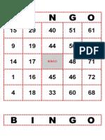 Bingo de Numeros