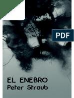 Straub, Peter - El Enebro (1990)
