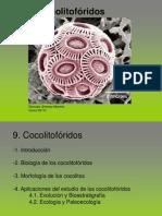 09_cocolitoforidos
