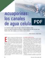Seminario 1- acuaporinas