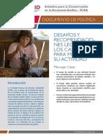 Desafíos y Recomendaciones Legales de Los Castañeros Para Mejorar Su Actividad-SPDA