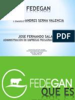 Fed Egan