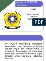 Persiapan Magang Di PT PUSRI Palembang