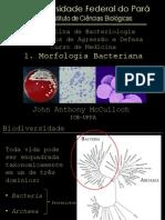 01 - Morfologia bacteriana