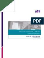DSI v1.1 Reporte de Interpretacion