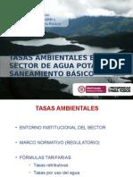 3.TASAS AMBIENTALES Mesoamerica 2013.pptx