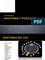 ANATOMIA_Y_FISIOLOGIA_(OJO)[1].ppt