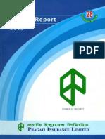 Annual Report 2013 of progati insurance ltd