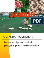 JAMUR 2