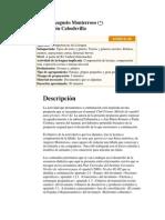 Una fábula de Augusto Monterroso.docx